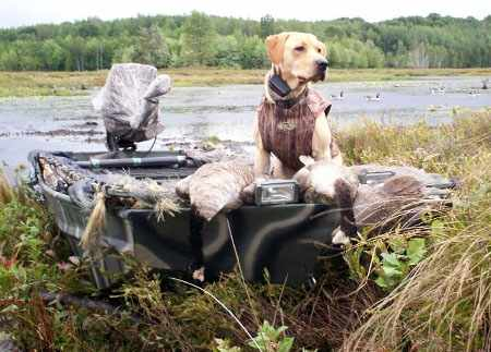 Лодка для охоты с собакой