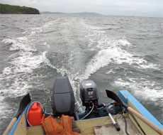 мотор SELVA PIRANHA 9.9 на лодке